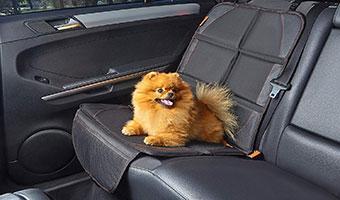 protector-asientos